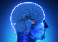 Восстановительное лечение нейроэндокринных нарушений гомеопатическими  лекарственными средствами. Клинический случай sanicula.