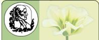 XXVI  научно-практическая конференция «Актуальные вопросы гомеопатии»